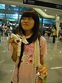 ARASHI AROUND AISA 2008之旅:迷路的小孩.......?