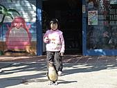 2010-12-18台南學甲頑皮世界:DSC06166.JPG