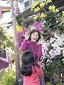 2011_02_06蘭花科技園區之旅:DSC06508.jpg