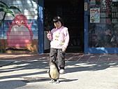 2010-12-18台南學甲頑皮世界:DSC06167.JPG