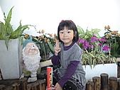 2011_02_06蘭花科技園區之旅:DSC06512.JPG