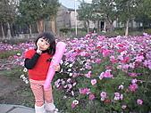 2011_02_05蕭壟文化園區之旅:DSC06459.JPG