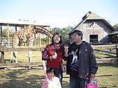 2010-12-18台南學甲頑皮世界:DSC06190.JPG