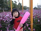 2011_02_05蕭壟文化園區之旅:DSC06460.JPG