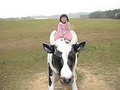 2009-12-06走馬瀨農場:DSC05036.JPG