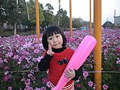 2011_02_05蕭壟文化園區之旅:DSC06461.JPG
