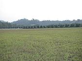 2009-12-06走馬瀨農場:DSC04991.JPG