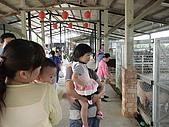 2009-04-25乳牛之家:DSC04537.JPG