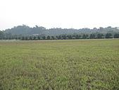 2009-12-06走馬瀨農場:DSC04992.JPG