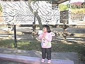 2010-12-18台南學甲頑皮世界:DSC06191.JPG