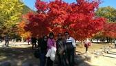 2013-10-25到2013-10-29 韓國之旅:IMAG5592.jpg