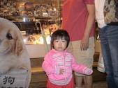2008-10-12淡水及九份旅遊:DSC03662.JPG