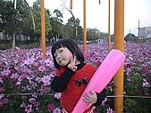 2011_02_05蕭壟文化園區之旅:DSC06463.JPG