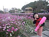 2011_02_05蕭壟文化園區之旅:DSC06464.JPG