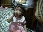 2008-05-06綁兩撮真像可愛的小牛角:DSC01343.JPG