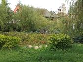 2011-05-28 高雄左營  孔廟:IMAG1199.jpg