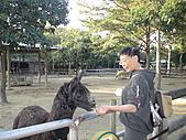 2010-12-18台南學甲頑皮世界:DSC06242.JPG