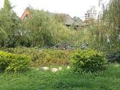 2011-05-28 高雄左營  孔廟:IMAG1200.jpg