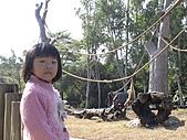 2010-12-18台南學甲頑皮世界:DSC06104.JPG