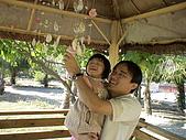 2008-10月員工旅遊:DSC03779.JPG