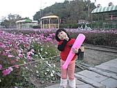 2011_02_05蕭壟文化園區之旅:DSC06466.JPG