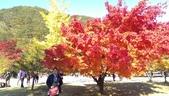 2013-10-25到2013-10-29 韓國之旅:IMAG5590.jpg