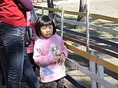 2010-12-18台南學甲頑皮世界:DSC06105.JPG