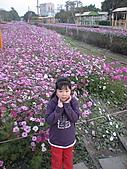 2011_02_05蕭壟文化園區之旅:DSC06468.jpg