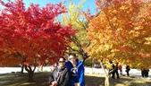 2013-10-25到2013-10-29 韓國之旅:IMAG5607.jpg