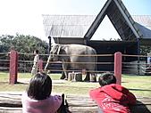 2010-12-18台南學甲頑皮世界:DSC06107.JPG