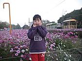 2011_02_05蕭壟文化園區之旅:DSC06469.JPG