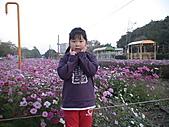 2011_02_05蕭壟文化園區之旅:DSC06471.JPG