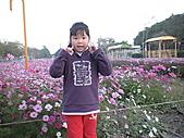 2011_02_05蕭壟文化園區之旅:DSC06473.JPG