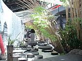 2011_02_06蘭花科技園區之旅:DSC06533.JPG