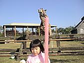 2010-12-18台南學甲頑皮世界:DSC06181.JPG