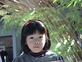 2011_02_06蘭花科技園區之旅:DSC06535.JPG