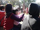2010-12-18台南學甲頑皮世界:DSC06110.JPG