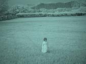 2009-12-06走馬瀨農場:DSC05011.JPG