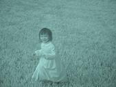 2009-12-06走馬瀨農場:DSC05012.JPG