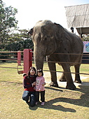 2010-12-18台南學甲頑皮世界:DSC06112.jpg