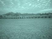 2009-12-06走馬瀨農場:DSC05013.JPG