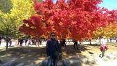 2013-10-25到2013-10-29 韓國之旅:IMAG5596.jpg