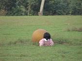 2009-12-06走馬瀨農場:DSC05072.JPG
