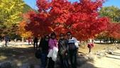 2013-10-25到2013-10-29 韓國之旅:IMAG5594.jpg