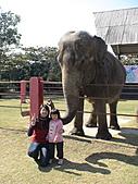 2010-12-18台南學甲頑皮世界:DSC06114.jpg