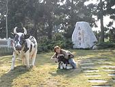 2009-12-06走馬瀨農場:DSC04853.JPG