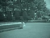 2009-12-06走馬瀨農場:DSC04856.JPG