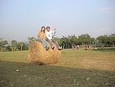 2009-12-06小小攝影師的傑作:DSC05080.JPG