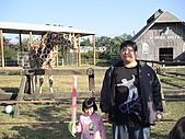 2010-12-18台南學甲頑皮世界:DSC06186.JPG