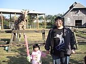 2010-12-18台南學甲頑皮世界:DSC06187.JPG